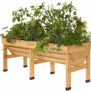 VegTrug Medium